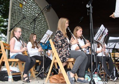 Jugendorchester Picknick 2015